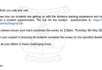 DSIB Student Questionnaire